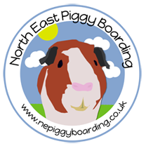 NE Piggy Boarding Logo